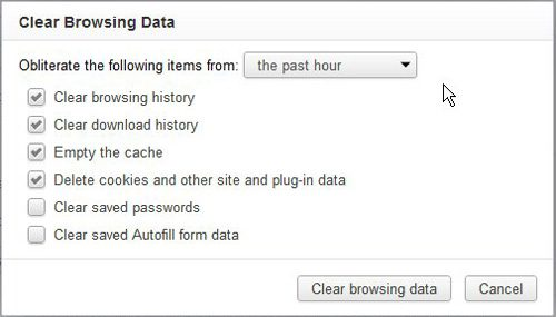 specify the settings for your chrome history delete