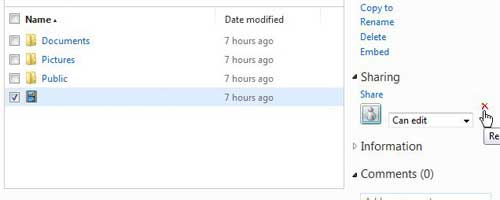 how to change skydrive sharing permissions