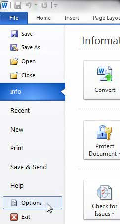 word 2010 options button