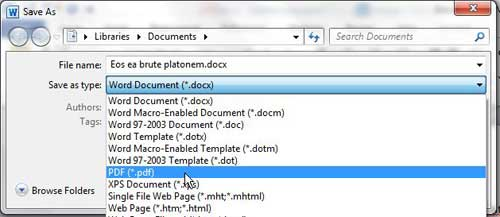 how to convert to pdf from word 2010