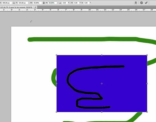 a resized layer in photoshop cs5