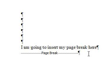 page break formatting sample