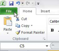 click the excel 2010 file tab