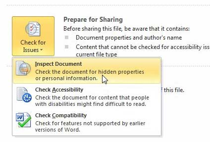 inspect the word 2010 document