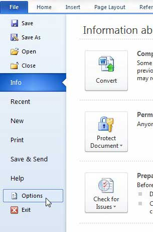 options on the file tab in word 2010
