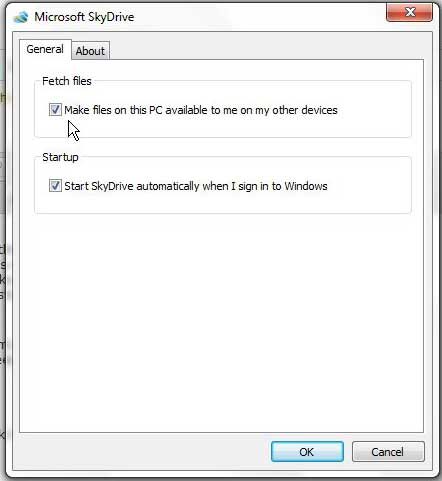 configure the fetch files setting in skydrive