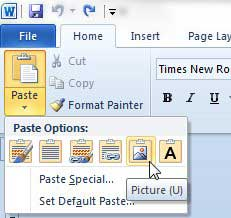 paste data as a picture from Excel to Word