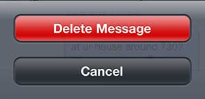 Tap the Delete Message button