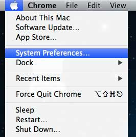 Open the System Preferences menu