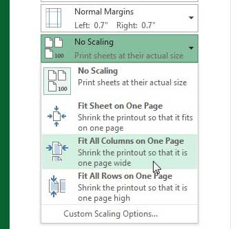 Select the Fit all Columns on One Page option