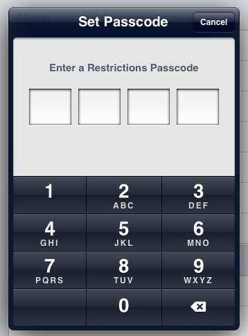 create a restrictions password