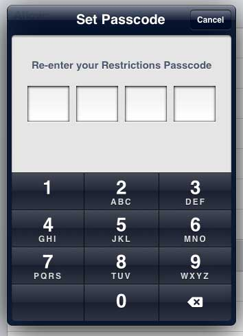 re-enter the restrictions password