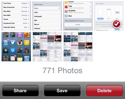 Select the pictures to delete, the press the red Delete button
