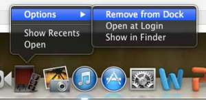 click options, then remove from dock