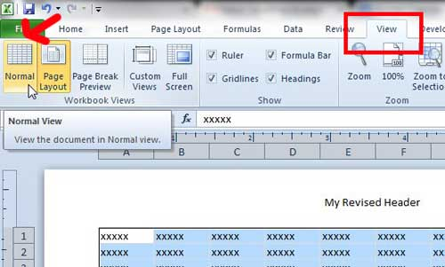 return to the normal excel view