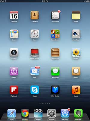 smaller sample ipad screenshot