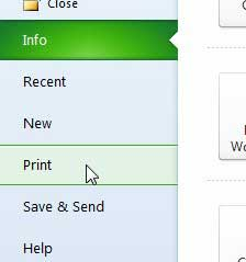 select the print option