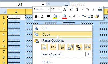how to paste as a picture in Excel 2010