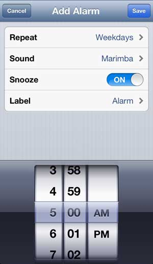 set the rest of the alarm options
