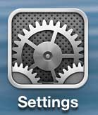 open the settings menu on the iphone 5