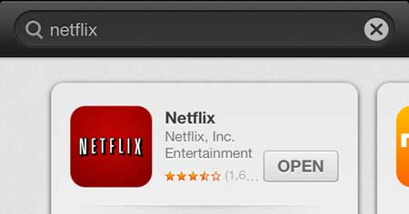 open the installed netflix app