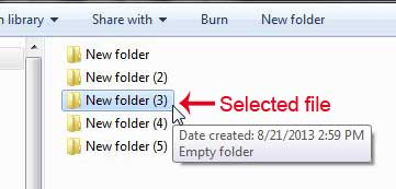 example of a selected file or folder
