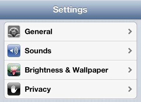select the brightness and wallpaper option