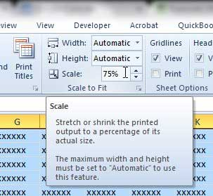how to scale a page in excel 2010
