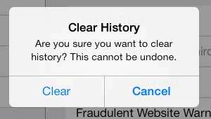 how to clear the safari history on the ipad