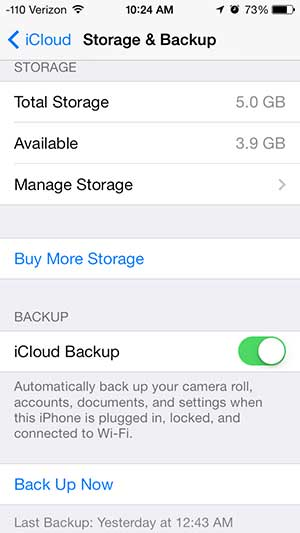 turn on the icloud backup setting