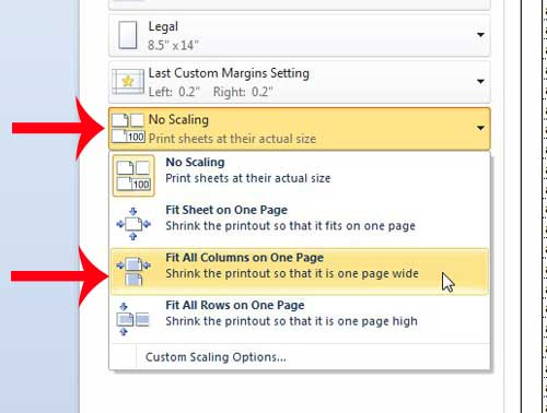 click the no scaling option, then click the fit all columns on one page option