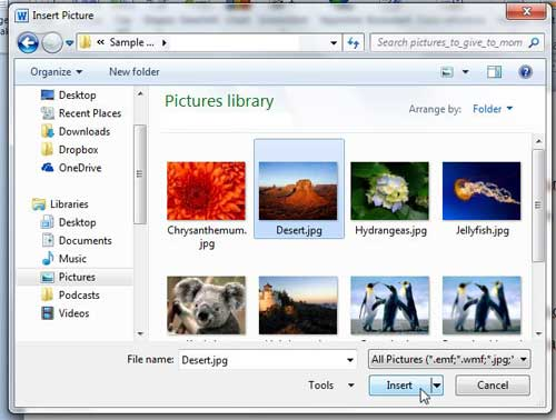 select the picture, then click insert