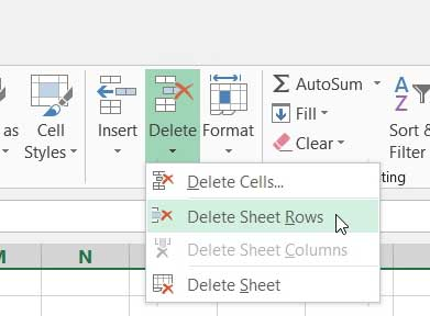 click the delete sheet rows option