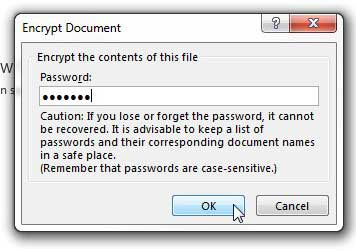 crerate a password for the workbook