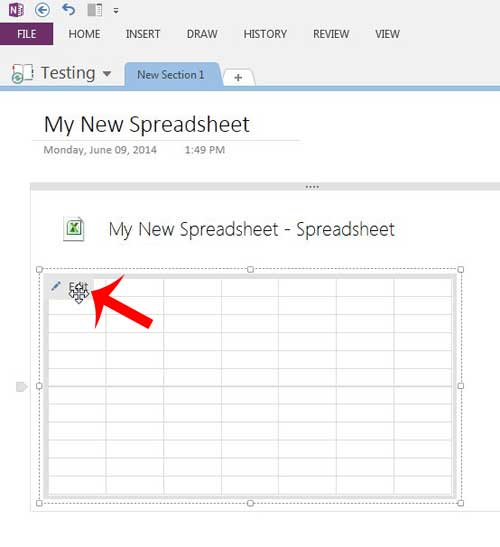 click the edit button on the spreadsheet image