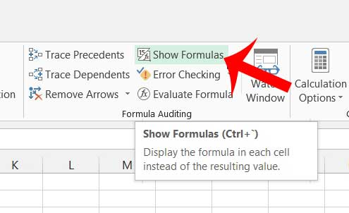 how to view formulas in excel 2013