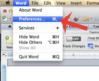 click word, then click preferences