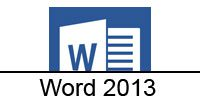 word-2013-category-icon