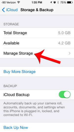 touch the manage storage button