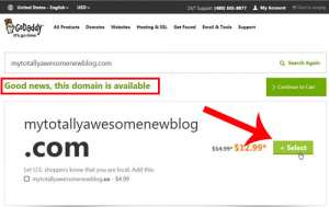 How to Buy a Domain Name for Your Blog from GoDaddy
