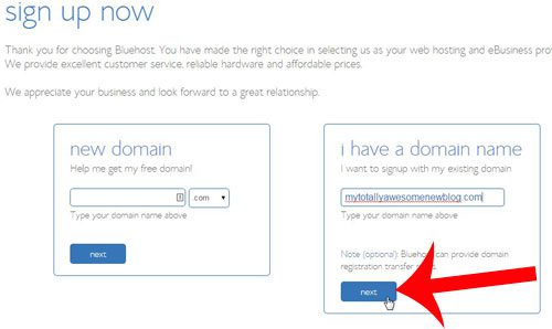 enter your domain name, then click next
