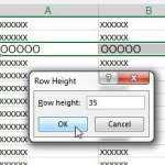 enter the desired row height