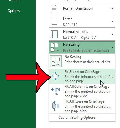 click the fit sheet on one page option