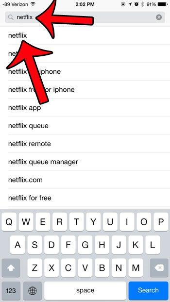 search for the netflix app