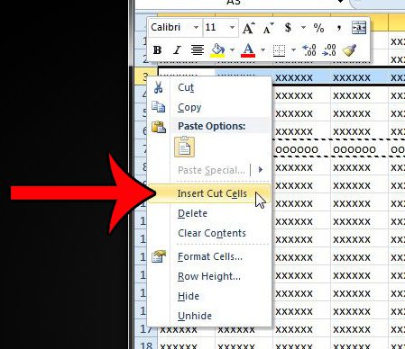 right click and insert cut cells