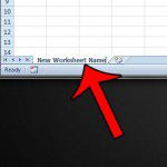 type the new worksheet name
