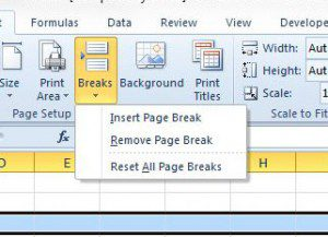 how to insert a page break in excel 2010