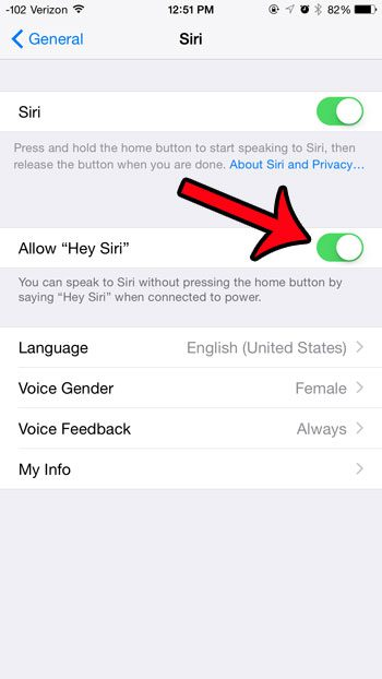 turn on the allow hey siri button