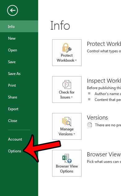 open the excel 2013 options menu