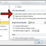 disable the auto fill options button in excel 2010
